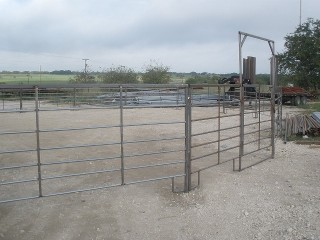 Self Standing Cattle Panels